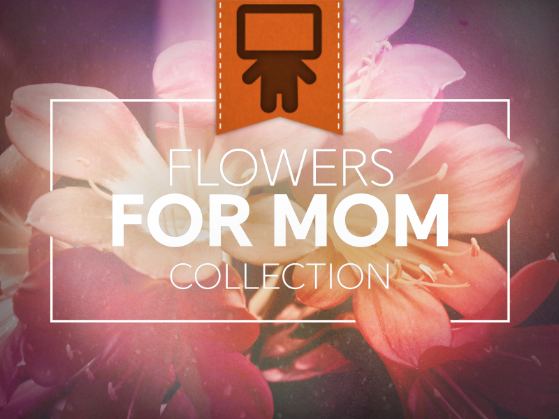 FLOWERS FOR MOM COLLECTION