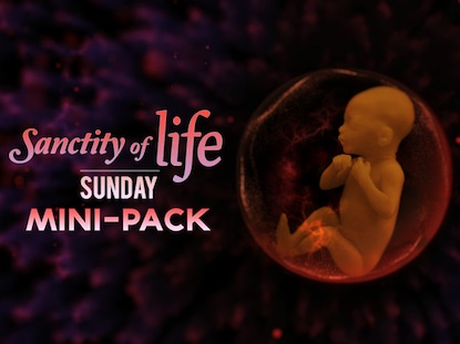 SANCTITY OF LIFE SUNDAY MINI-PACK