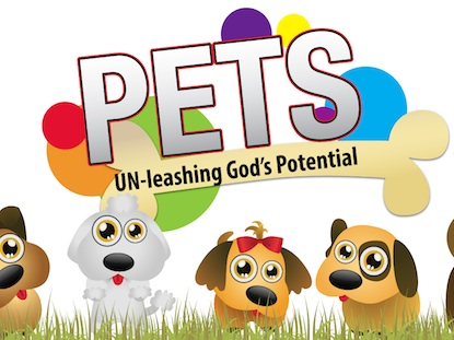PETS - 12 WEEK CURRICULUM