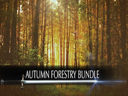 AUTUMN FORESTRY PACK