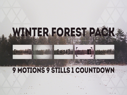 WINTER FOREST PACK