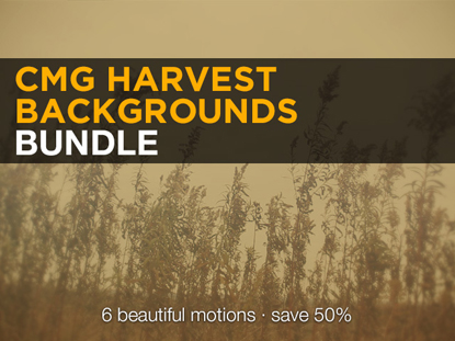 HARVEST BACKGROUND BUNDLE