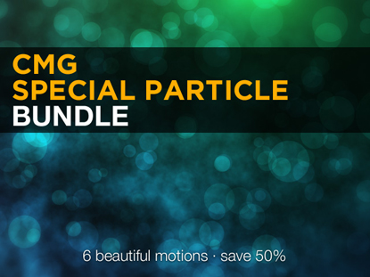 SPECIAL PARTICLE BUNDLE