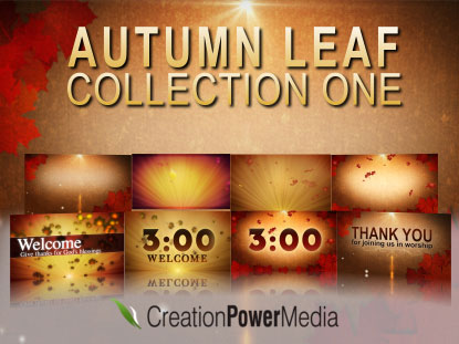 AUTUMN LEAF COLLECTION