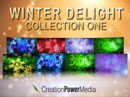 WINTER DELIGHT COLLECTION 1
