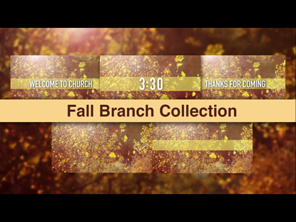 FALL BRANCH COLLECTION