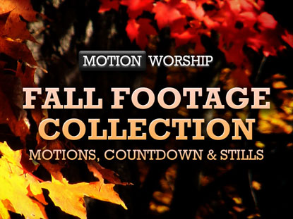FALL FOOTAGE COLLECTION