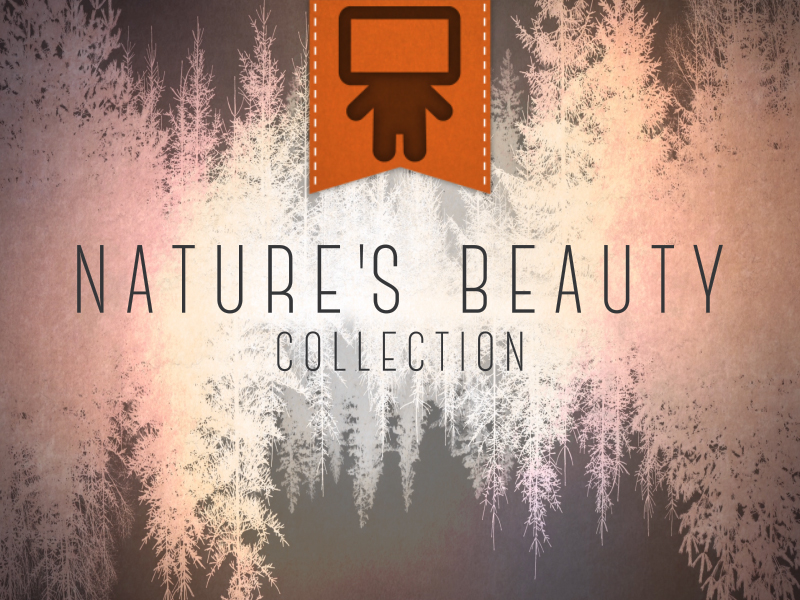 NATURE'S BEAUTY COLLECTION