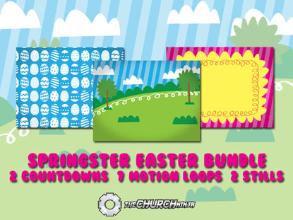 SPRINGSTER MEDIA BUNDLE