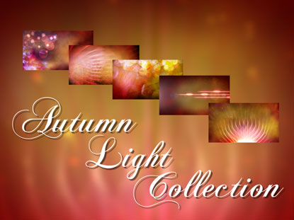 AUTUMN LIGHT COLLECTION