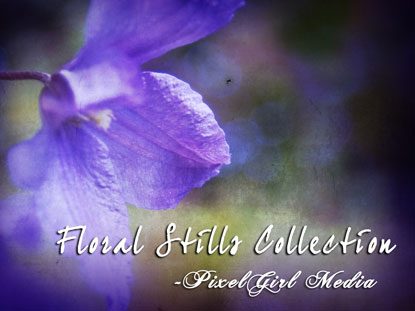 FLORAL STILLS COLLECTION