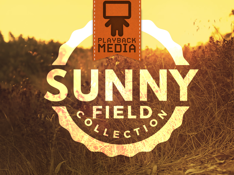 SUNNY FIELD COLLECTION