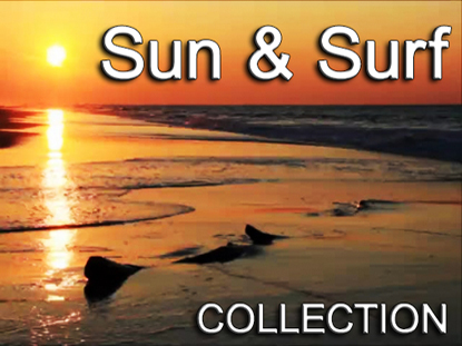 SUN AND SURF COLLECTION