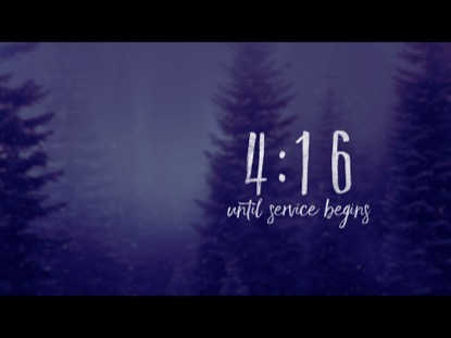 SECLUDED FOREST COUNTDOWN
