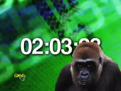 BRITISH GORILLA REMINDERS COUNTDOWN