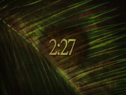 ANCIENT PALM 2 HD COUNTDOWN