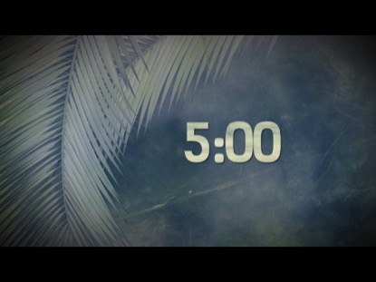 PALM BRANCHES COUNTDOWN