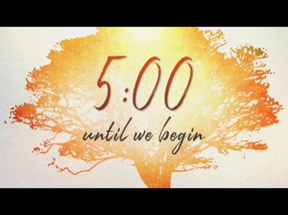 TREE OF LIFE COUNTDOWN