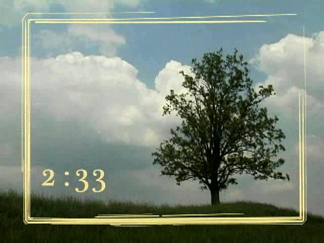 TREE COUNTDOWN 2
