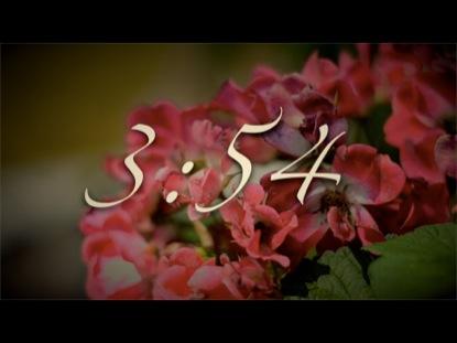 VINTAGE FLOWER COUNTDOWN