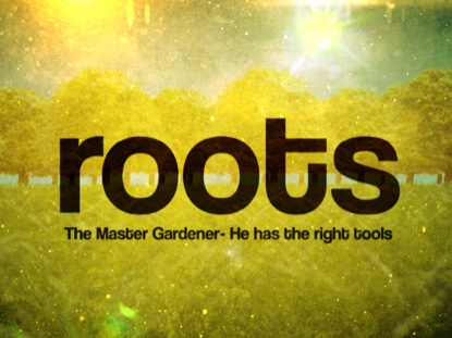 Preview for ROOTS