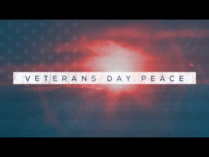 VETERANS DAY PEACE