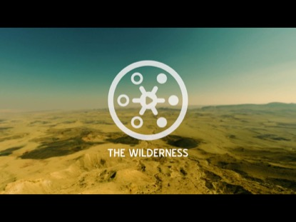 PROMISED LAND THE WILDERNESS