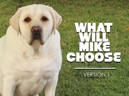 WHAT WILL MIKE CHOOSE VERSION 1