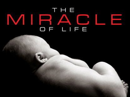 Preview for THE MIRACLE OF LIFE