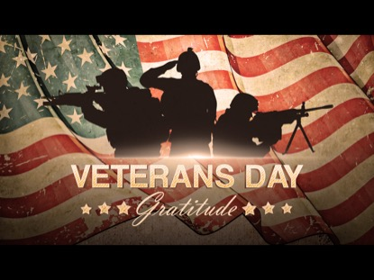 VETERANS DAY GRATITUDE