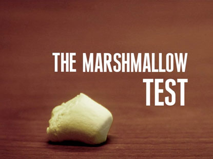 Preview for THE MARSHMALLOW TEST