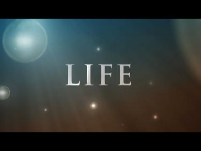 LIFE INSPIRATION
