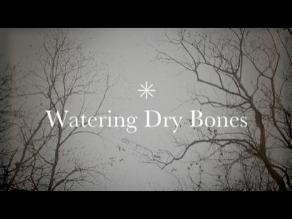 WATERING DRY BONES
