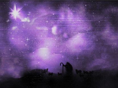 SHEPHERD ON A HILL STAR PURPLE BRIGHT