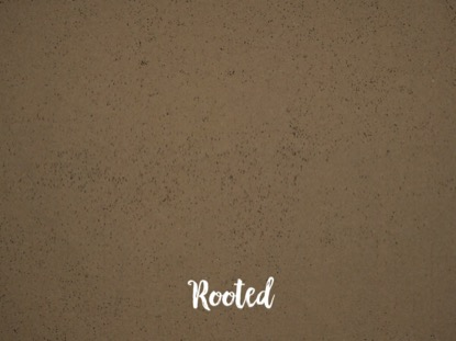 ROOTED BLANK MOTION 03