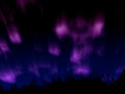 NORTHERN LIGHTS PURPLE