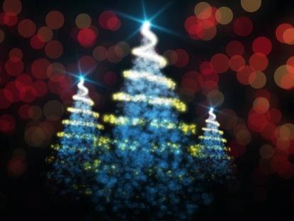 WINTER CHRISTMAS TREES