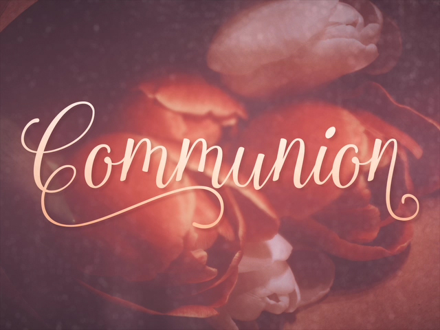 ELEGANT FLOWERS COMMUNION