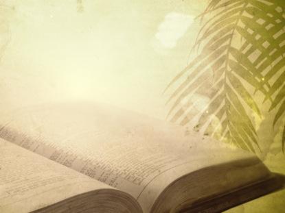 PALM SCRIPTURE