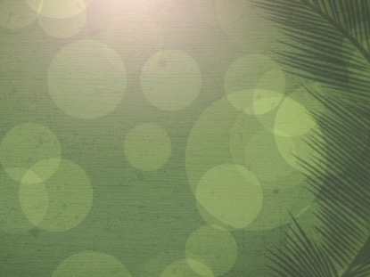PALM SUNDAY BOKEH 03