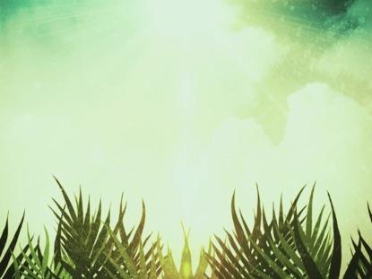 PALM SUNDAY MOTION 02