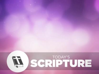 SPRING BOKEH SCRIPTURE
