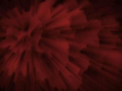 FLOWER BACKGROUND RED
