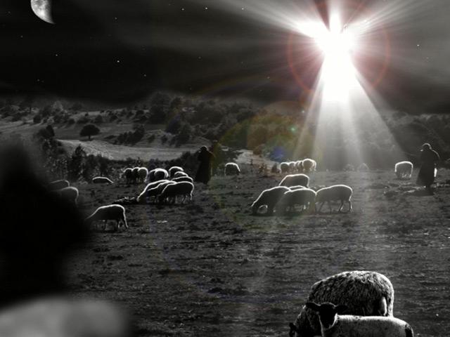 ANGEL AND SHEPHERDS LOOP
