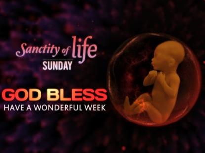 SANCTITY OF LIFE GODBLESS LOOP