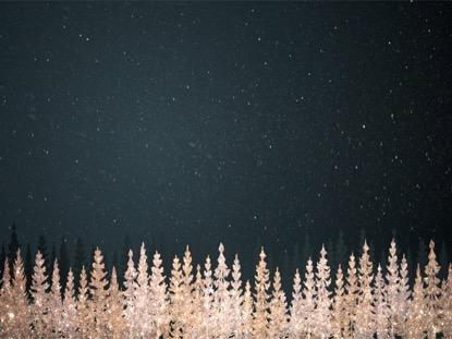 CHRISTMAS SPARKLE 5