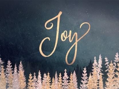 CHRISTMAS SPARKLE JOY