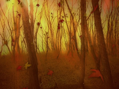 FALL BACKGROUND 1