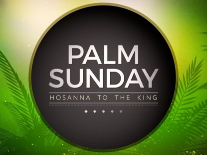 PALM SUNDAY VOL 2 TITLE
