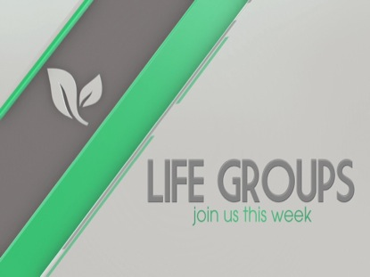 PARALLELS LIFE GROUPS